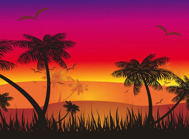 Tropical sunset scene Tree Vector