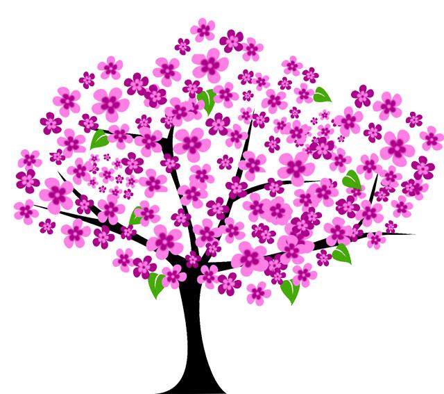 Cherry Tree Tree Vector