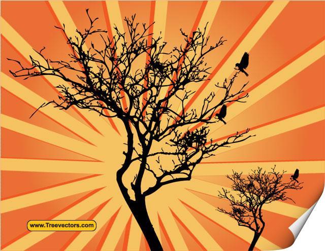 Sunburst Tree vector Tree Vector