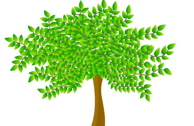 Vector tree illustration Tree Vector